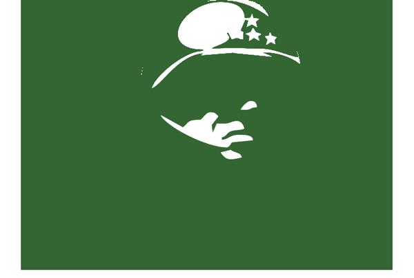 General Patton Memorial Museum Logo